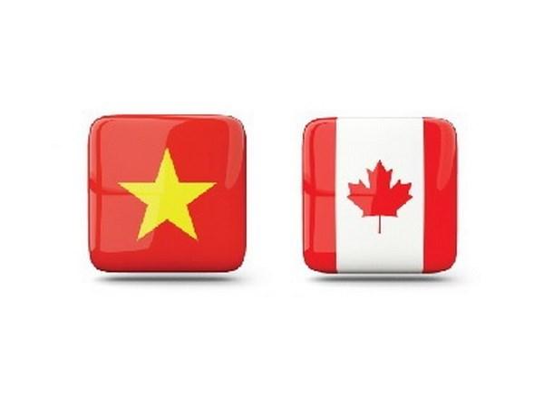越南与加拿大利用优惠政策 促进贸易合作 hinh anh 1