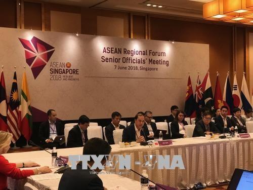 越南代表团出席东盟系列高官会议 hinh anh 1