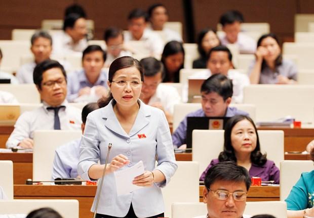 第十四届国会第五次会议:越南将不再有纯粹经营的国防企业 hinh anh 1