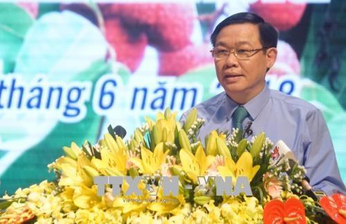 王廷惠副总理:北江省应注重荔枝收获后的保鲜技术 hinh anh 1
