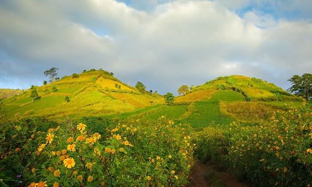 嘉莱省重视发展文化生态旅游 hinh anh 1