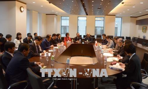 越南政府常务副总理张和平访日并出席亚洲未来会议 hinh anh 1