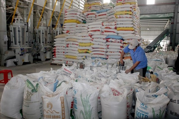 泰国大米产量呈现猛增态势 hinh anh 1