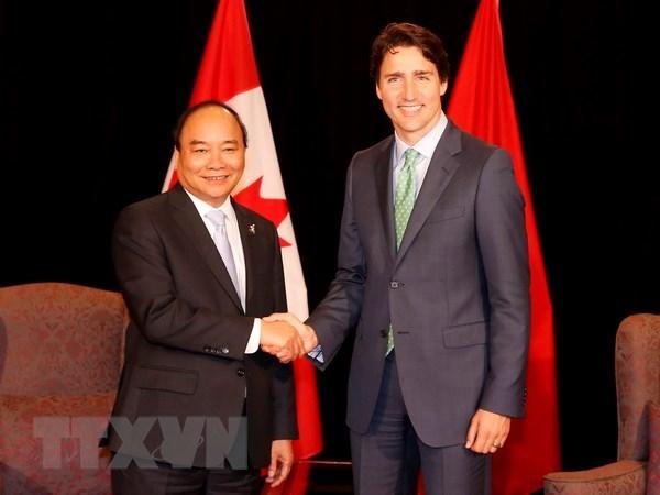 越南政府总理阮春福加拿大之旅为两国全面伙伴关系注入新的动力 hinh anh 1
