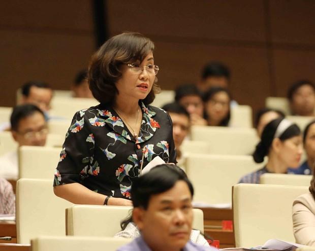 越南第十四届国会第五次会议:国会代表表决通过两个法案 hinh anh 1
