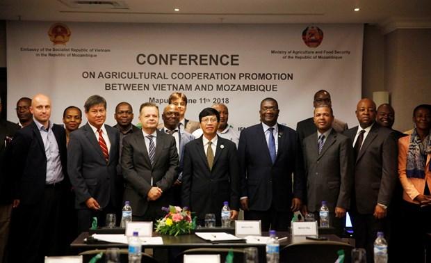 莫桑比克高度评价与越南的农业合作效果 hinh anh 2
