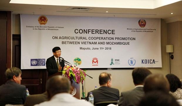 莫桑比克高度评价与越南的农业合作效果 hinh anh 1