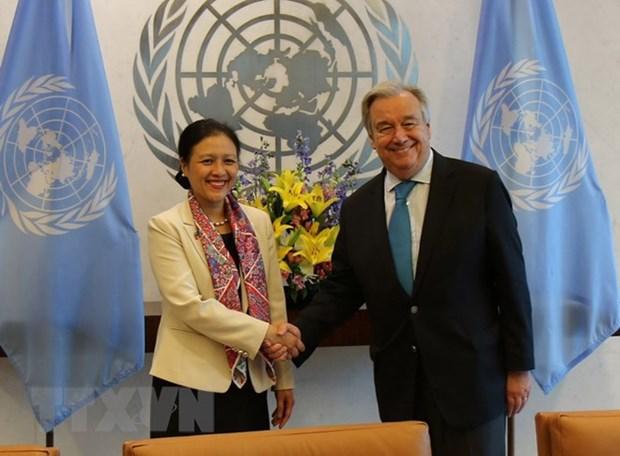 联合国高度评价越南在多边框架下的积极作用 hinh anh 1
