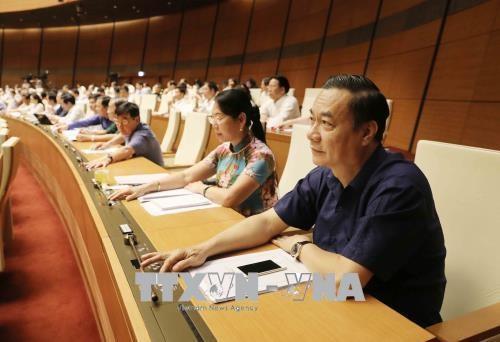 越南国会正式通过《体育法》(修正案) hinh anh 1
