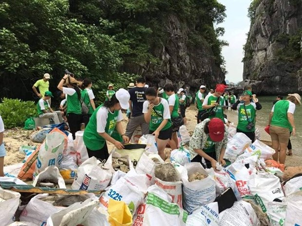 广宁省下龙市走向无垃圾旅游 打造绿色下龙湾 hinh anh 2