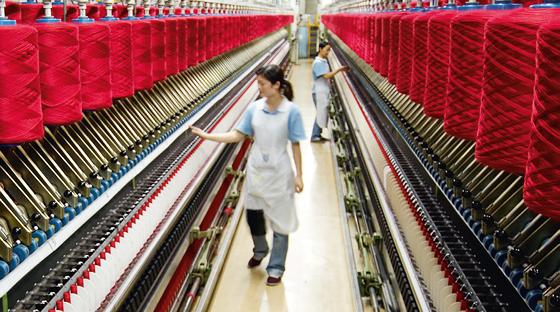 投资总额5000万美元的绵羊绒纱线工厂在大叻市动工兴建 hinh anh 2