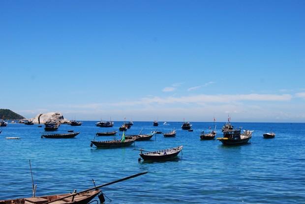 加强环保工作 努力保护与发挥占婆岛世界生物圈储备区的价值 hinh anh 1