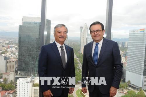 墨西哥经济部领导高度评价墨越贸易合作 hinh anh 1