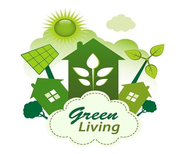河内市希望与德国企业加强环保合作 hinh anh 1