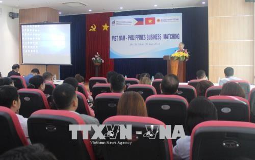 越南与菲律宾企业加强贸易和投资合作 hinh anh 1