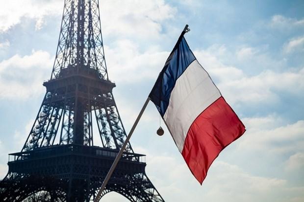 东盟——法国的优先伙伴 hinh anh 2