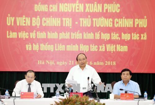 政府总理阮春福:合作社联盟在越南参与国际一体化肩负着重要使命 hinh anh 2