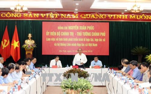 政府总理阮春福:合作社联盟在越南参与国际一体化肩负着重要使命 hinh anh 1