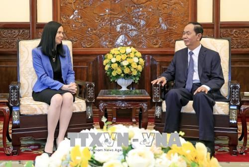 越南国家主席陈大光会见离任辞行的波兰驻越大使 hinh anh 2