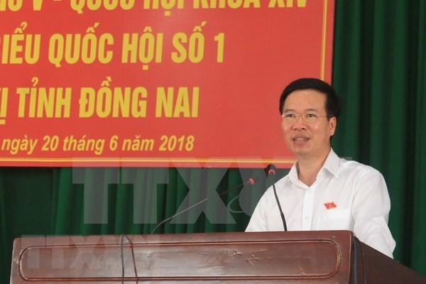 选民对《特别行政经济单位法》给予高度关注 hinh anh 1