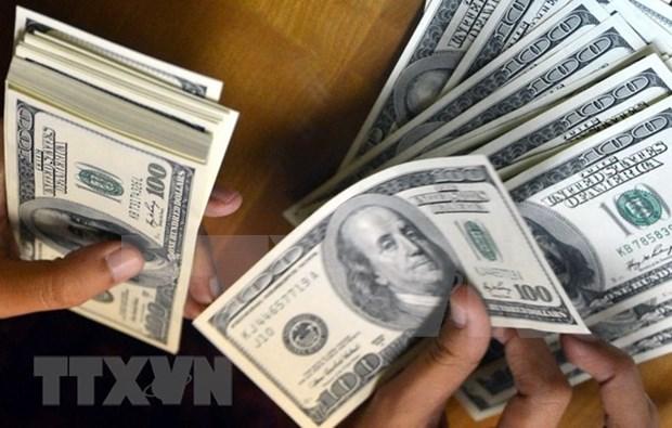 每年在海外务工的越南劳动者汇回国内30亿美元 hinh anh 1