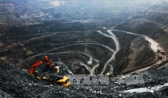 越南煤炭出口和销售找回增长节奏 hinh anh 1