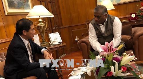 越南外交部副部长裴青山访问新加坡和印度 hinh anh 2