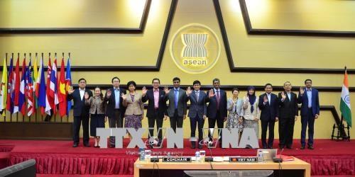 越南共同主持召开第18次东盟印度联合合作委员会会议 hinh anh 2
