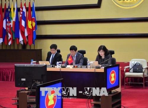 越南共同主持召开第18次东盟印度联合合作委员会会议 hinh anh 1