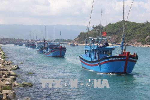 平定省水产养殖和捕捞产量增加 hinh anh 1