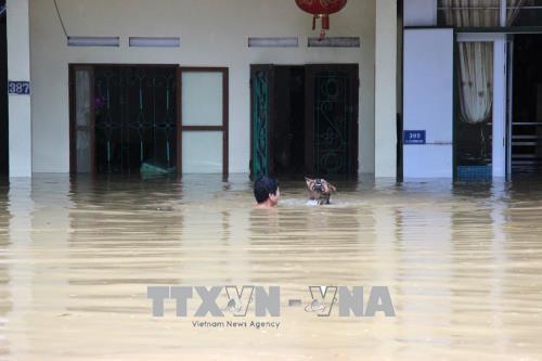 北部山区各省遭特大暴雨洪水袭击 政府总理指导抓紧做好救灾工作 hinh anh 1