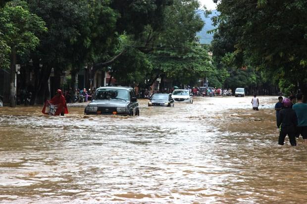 北部山区暴雨洪水灾害:河江和莱州两省死亡和受伤人数20人 hinh anh 2