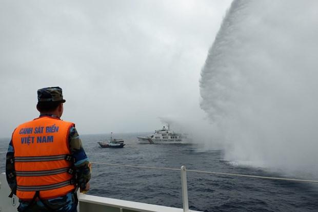 越南与中国在北部湾开展渔业捕捞合作 hinh anh 1