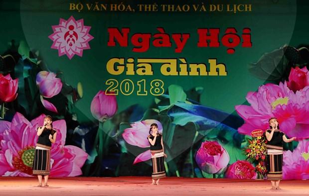 2018年越南家庭日温馨举行 hinh anh 1