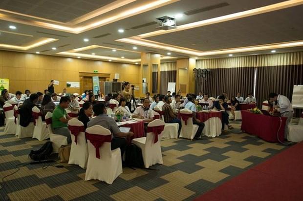促进从事社会林业及气候变化领域的各社会组织的参与度 hinh anh 1