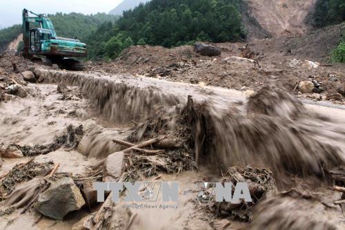 暴雨洪灾给北部山区各省造成经济损失达1410亿越盾 hinh anh 1