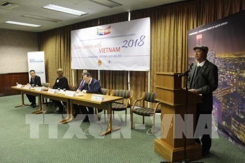 越南与南非力争2020年双边贸易额达15亿美元 hinh anh 1