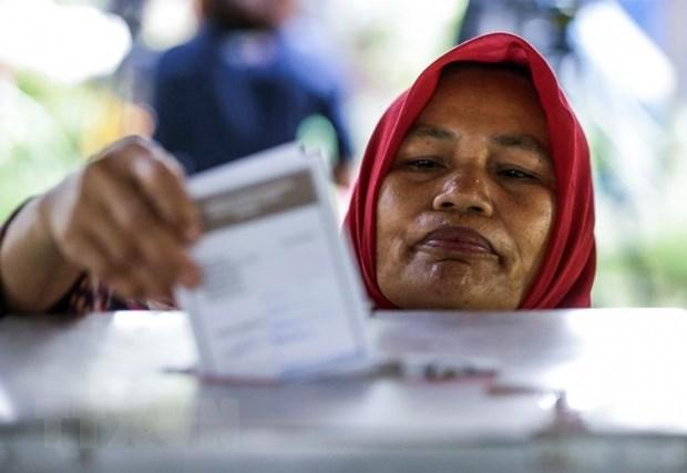 印度尼西亚举行地方首长选举 hinh anh 1