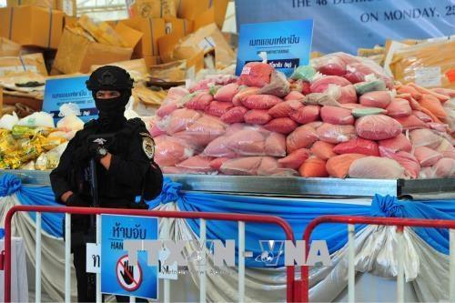 国际禁毒日:东南亚多国举行大规模毒品销毁活动 展示禁毒决心 hinh anh 2