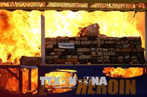国际禁毒日:东南亚多国举行大规模毒品销毁活动 展示禁毒决心 hinh anh 1