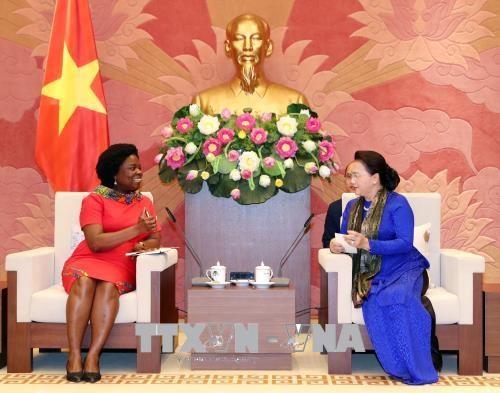 阮氏金银会见世界银行东亚与太平洋地区副行长维多利亚·克瓦 hinh anh 2