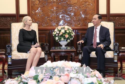 越南国家主席陈大光会见挪威驻越大使 hinh anh 1