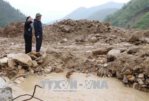 国会副主席冯国显视察莱州省洪灾灾情 hinh anh 1