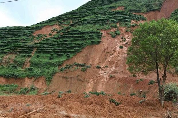 越南政府副总理郑廷勇要求全力高效推进灾后恢复重建工作 hinh anh 1