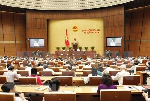 关于第十四届国会第五次会议质询和答复质询活动的决议 hinh anh 1