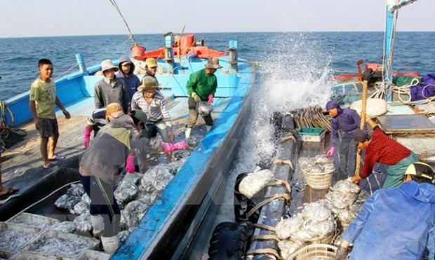 每位渔民都是法律宣传使者 hinh anh 2