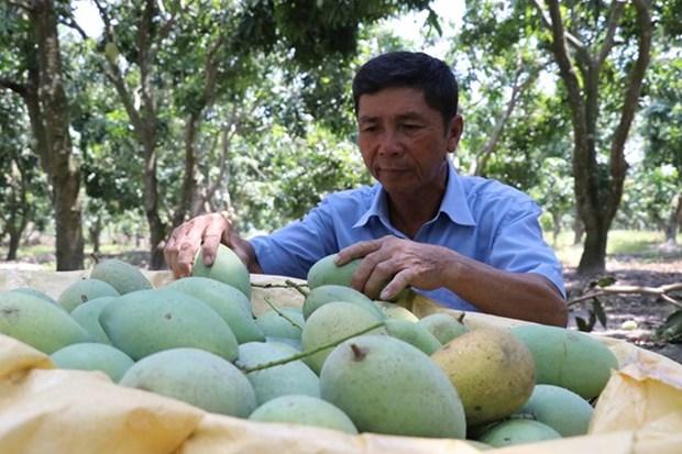 越南与瑞士农业贸易投资论坛在瑞士举行 hinh anh 1