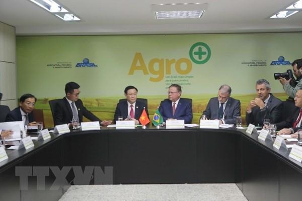 越南政府副总理王廷惠对巴西进行正式访问 hinh anh 4