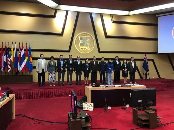东盟-新西兰联合合作委员会第六次会议在雅加达召开 hinh anh 1
