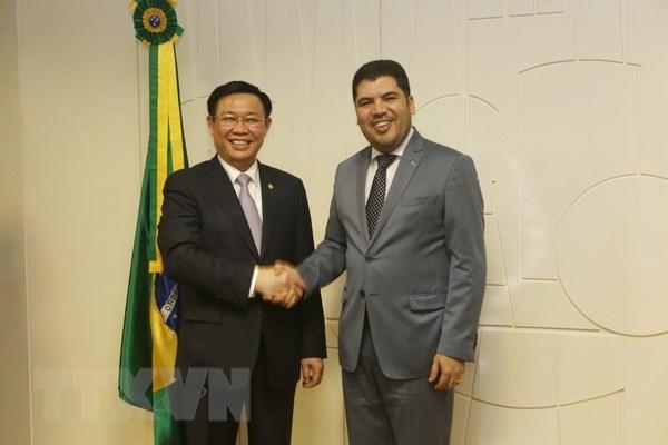 越南政府副总理王廷惠对巴西进行正式访问 hinh anh 3